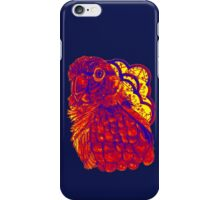 Sunset Conure iPhone Case/Skin