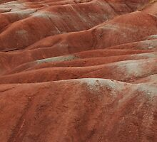 Red Clay Hills_1 by sundawg7
