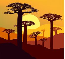 Baobab  at Sunset by smarttaste