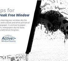 Tips for Streak Free Window by AWCSSydney