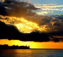 The Rays of Sun by Tamara Travers