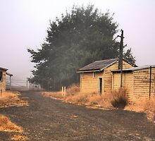 Obsolete Railway Buildings, Bridgetown, Western Australia by Elaine Teague