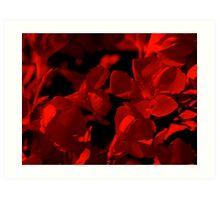 Red Oleander Art Print