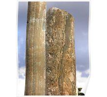 Wrinkled stone Poster