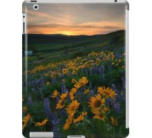 Blue and Gold Sunset iPad Case/Skin