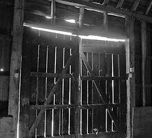 Barn doors by woolleyfir