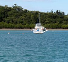 Shute Harbour The Whitsundays by bowenite