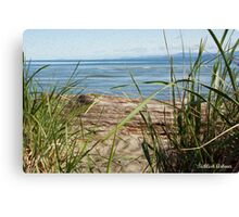 Beach's View Canvas Print