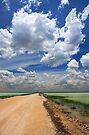 African Sky, Etosha National Park, Namibia, Africa. by PhotosEcosse