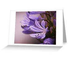Amethyst Light: Greeting Card