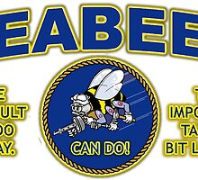THE DIFFICULT WE DO TODAY - SEABEES by colormecolorado