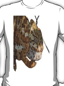 Chameleon Hanging On A Wire Fence T-Shirt