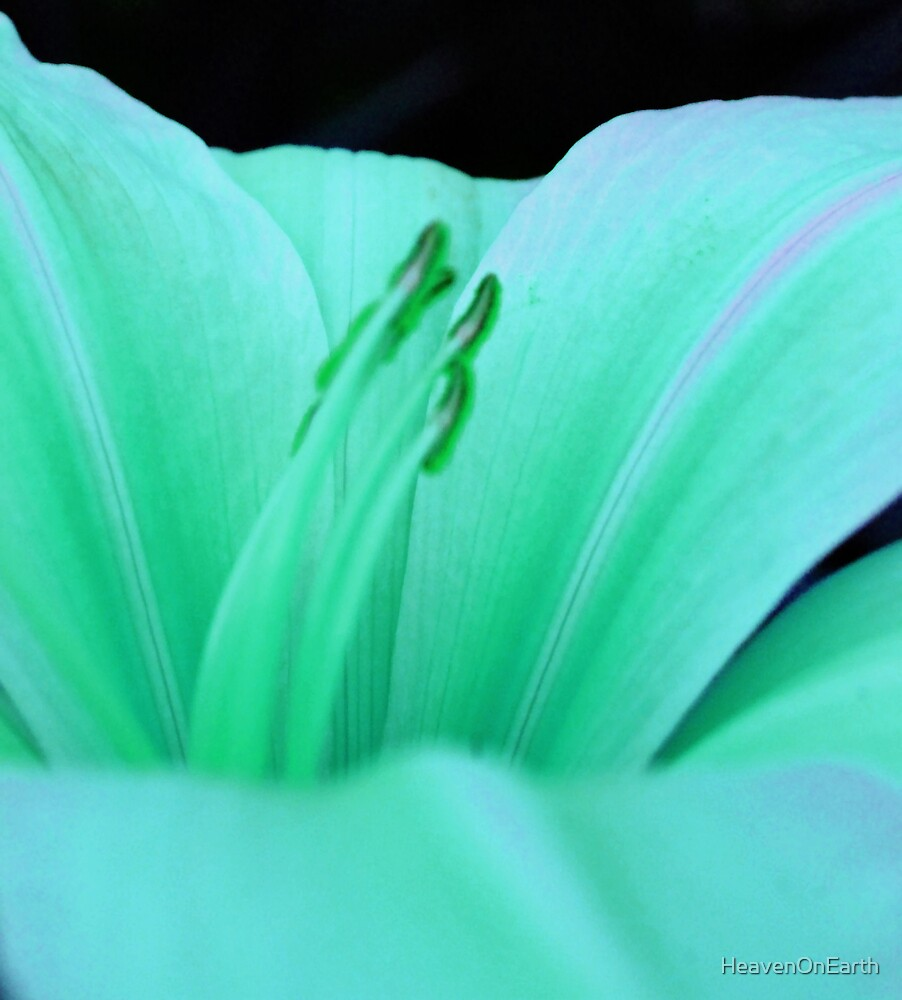 Green Hue by HeavenOnEarth