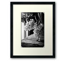 Monochrome Lilacs Framed Print