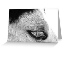 30 Lashes Greeting Card