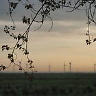 Windfarm at Dawn by SmileyShazza