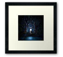 Doors Of Tardis Framed Print