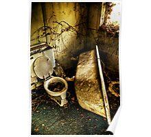 Tub & Toilet Poster
