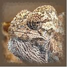 Chameleon With Sinister Facial Expression by taiche