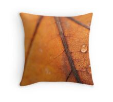 Autumnal Throw Pillow
