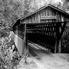 Easley Covered Bridge by WTBird