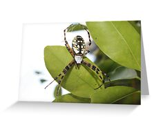 Colorful Visitor Greeting Card