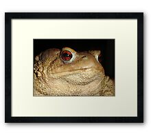 Toad Portrait - Warts and All Framed Print