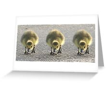 On Your Mark! Get Set!.... Greeting Card