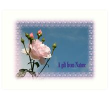 A gift from Nature Art Print