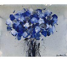 Blue Spring '09 Photographic Print