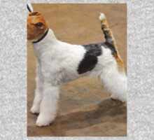 Special Fox Terrier Wire Coat Kids Clothes