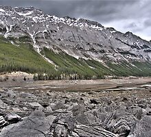 Jasper Park Mountains near Medicine Lake by John Fletcher