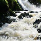 28.4.2015: Running Water by Petri Volanen