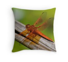 Lacewing Dragonfly Throw Pillow