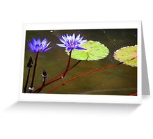 Two is company Greeting Card
