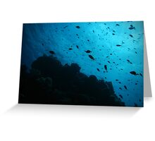 Life on the reef Greeting Card