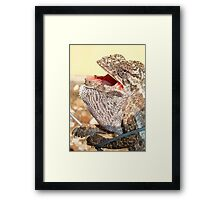 A Chameleon With Open Mouth Framed Print