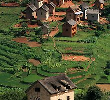 Monopoly Houses, Rural Landscape, Madagascar by Jane McDougall