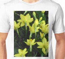 Daffodils dripping wet Unisex T-Shirt