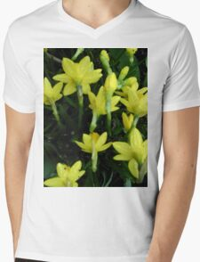 Daffodils dripping wet Mens V-Neck T-Shirt