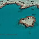Heart Reef  Vicki Ferrari by Vicki Ferrari