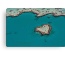 Heart Reef © Vicki Ferrari Canvas Print