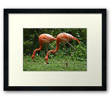 Synchronisation!! Framed Print