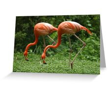 Synchronisation!! Greeting Card