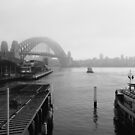 Morning Ferry in Circular Quay by Chris  Jee