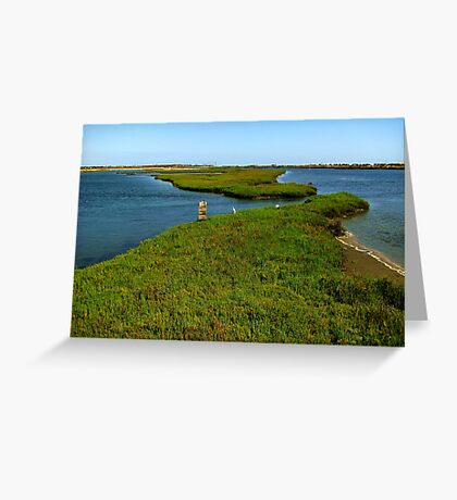 Bolsa Chica Ecological Reserve  Greeting Card