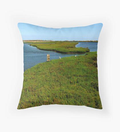 Bolsa Chica Ecological Reserve  Throw Pillow