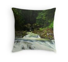 Cave Creek Throw Pillow