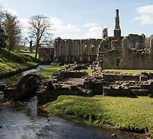 FOUNTAINS ABBEY AND STUDLEY ROYAL by paulasphotos101