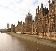 Houses of Parliment on the banks of the river Thames by Andy Moseley
